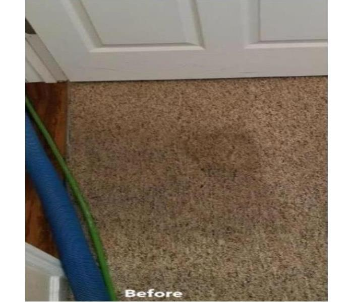 Cleaning Carpet in East Baton Rouge Before